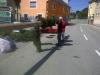 mai-BAUM-fest-2012-01