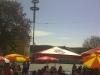 mai-BAUM-fest-2012-11